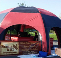 buckin wild mechanical bull rentals